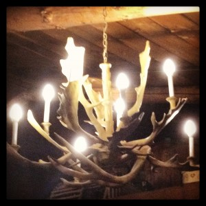 Chandelier at the Log Jam- By Michele Carroll